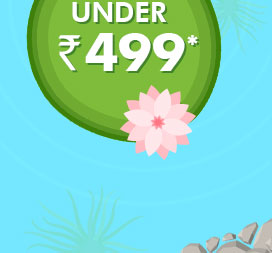 Under Rs. 499*