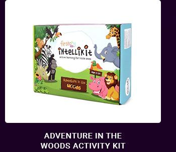 Adventure In The Woods Activity Kit