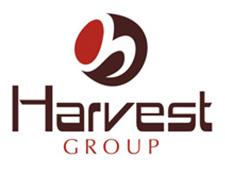 Harvest Saffron