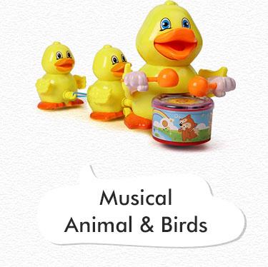 Musical Animal and Birds