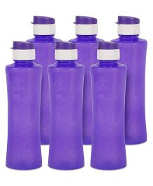 G-Pet Sipper Water Bottles Pack of 6 Daffodil Purple - 1000 ml