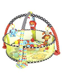 Infantino Grow-With-Me Activity Gym & Ball Pit - Multicolor