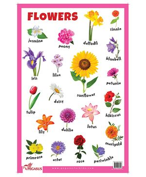 Flowers Educational Chart - English