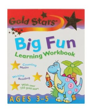 Big Fun Learning Workbook