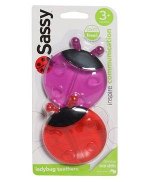 Sassy Ladybug Teethers