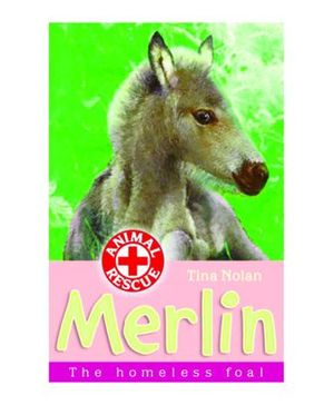 Merlin The Homeless Foal - English