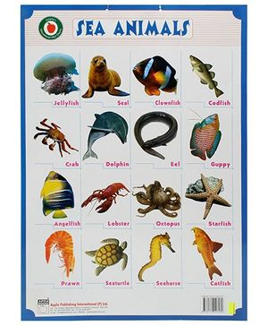 Apple Books Sea Animals Mini Chart - English