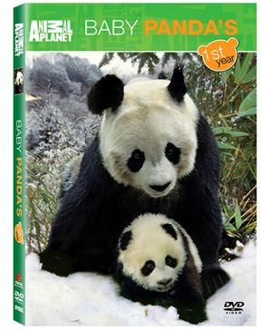 Animal Planet - Baby Pandas First Year