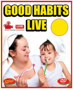 Bento Good Habits Live DVD - English