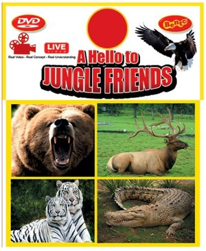 Bento A Hello to Jungle Friends Live DVD - English