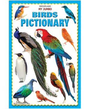 Dreamland My Jumbo Birds Pictionary - English