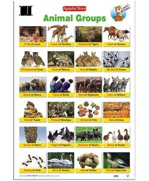 Apple Tree Educational Chart- Animal Groups