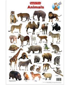 Apple Tree Educational Chart- Animals