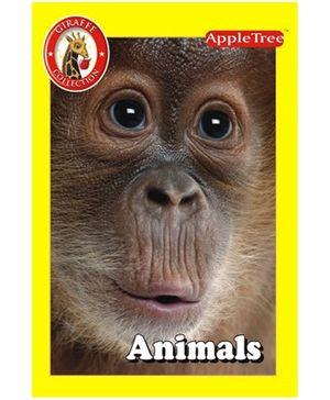 Apple Tree Giraffe Collection Animals- English
