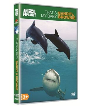 Animal Planet DVD Thats My Baby Bandit And Brownie - English