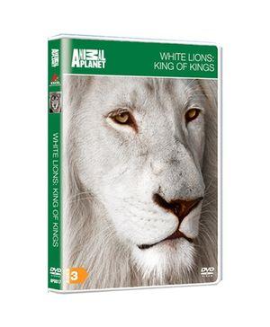 Animal Planet DVD White Lions King of Kings - English