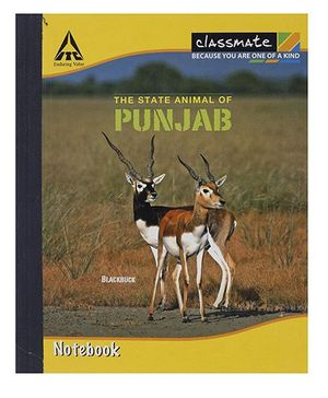 Classmate Hard Cover Double Ruled Notebook - 92 Pages