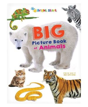 Big Picture Book Of Animals - English