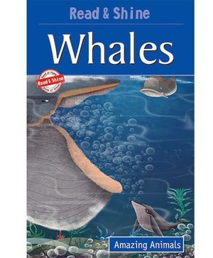 Whales Amazing Animals - English