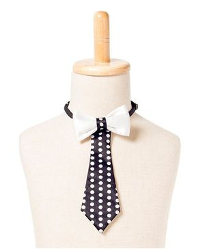 Brown Bows Satin Tail Down Bow Tie - Black and White