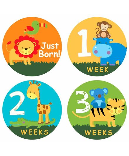 Fusion Graphix First Year Baby Milestone Stickers - Multicolor
