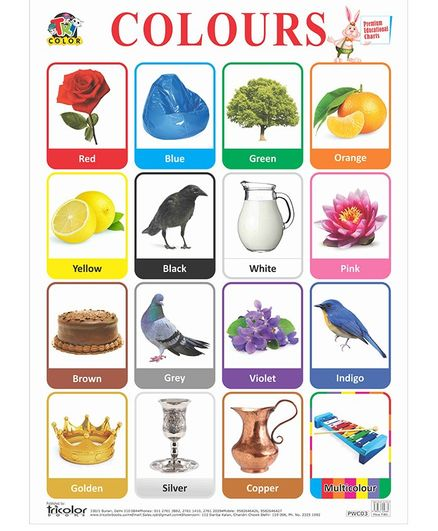 Big Sized Wall Hanging Educational Color Chart - Multicolor