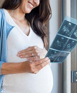 Pregnancy Inspection Schedule