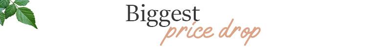 Biggest Price Drop