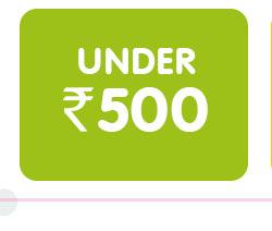 Under ₹ 500