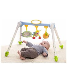Taf Toys Take-to-Play Baby Gym - Multi Color