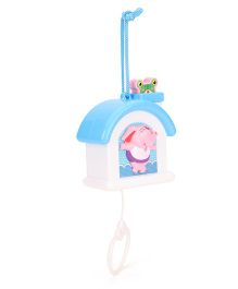 1st Step Musical Pulling Toy (Design May Vary)