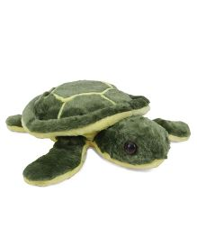 Tickles Soft Toy Turtle Green - 30 cm