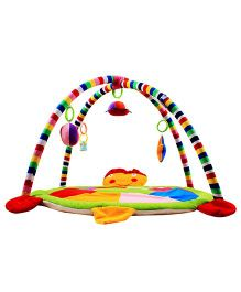 Ole Baby Twist And Fold Tortoise Shape Play Gym - Multi Colour