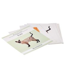 Brainsmith Cats Flash Cards - 10 cards