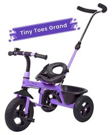R for Rabbit Tiny Toes Grand The Smart Plug N Play Tricycle - Purple