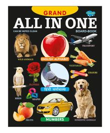 All In One Picture Book - English