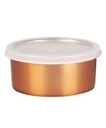 Falcon Double Wall Steel Multipurpose Container (Colour May Vary)