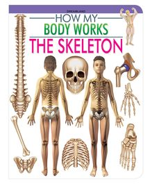 The Skeleton How My Body Works - English