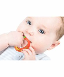 Nippon Fruit Shaped Water Filled Teether - Orange