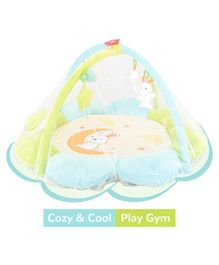 R for Rabbit First Play Musical Multipurpose Play Gym - Green Blue
