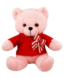My NewBorn Teddy Bear Soft Toy Red and Pink  - Height  30 cm