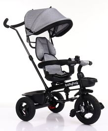 Babyhug Hermes Tricycle with Detachable Backrest & Canopy - Black Grey