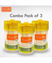 Tulips Toothpicks with Wooden Jar Pack of 3 - 250 Pieces Each
