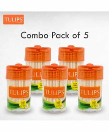 Tulips Toothpicks with Wooden Jar Pack of 5 - 250 Pieces Each