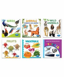 Navneet Tiny Board Wipe Clean Book II Pack of 6 - English