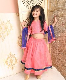 Amairaa Half Sleeves Flower Embroidered Choli With Lehenga & Netted Dupatta Set - Fuchsia Pink & Blue