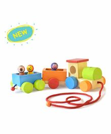 Shumee Jungle Pull Along Train Toy Set - Multicolor