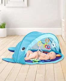 Baby Play Gym with Canopy - Blue