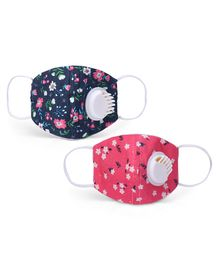 Babyhug 2 to 4 Years Printed Face Mask with Carbon Filter and Breathing Valve Pink Blue - Pack of 2