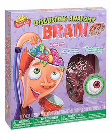 Scientific Explorer Disgusting Anatomy Brain - Multicolor